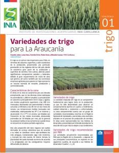 Ficha 2 trigo