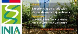 "Charlas Virtuales ""Experiencias en producción de uva de mesa bajo cubierta"". @ https://docs.google.com/forms/d/e/1FAIpQLSc1UmS2aW2ef2S-DBvrjRveNrBIxVaK50jcWIjC7NIL1KJpeQ/viewform"