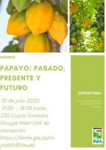 Webinar Papayo: Pasado, Presente y Futuro @ Google Meet