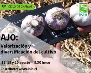 """Seminario de Cierre:  Proyecto FIC: """"Valorización y diversificación del Cultivo del Ajo"""""""