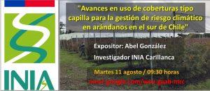 """Charla virtual: """"Avances en uso de coberturas tipo capilla para la gestión de riesgo climático en arándanos en el sur de Chile"""""""