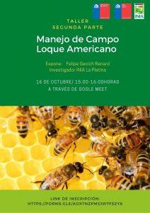Taller virtual: Segunda parte Manejo de Campo Loque Americano @ Google Meet