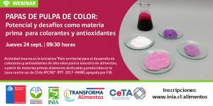 Webinar - Papas de pulpa de color: Potencial y desafíos como materia   prima  para colorantes y antioxidantes @ Google Meet