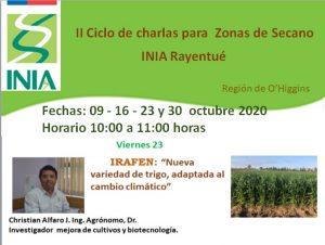 """""""Irafen: Nueva variedad de trigo adaptada al cambio climático"""""""