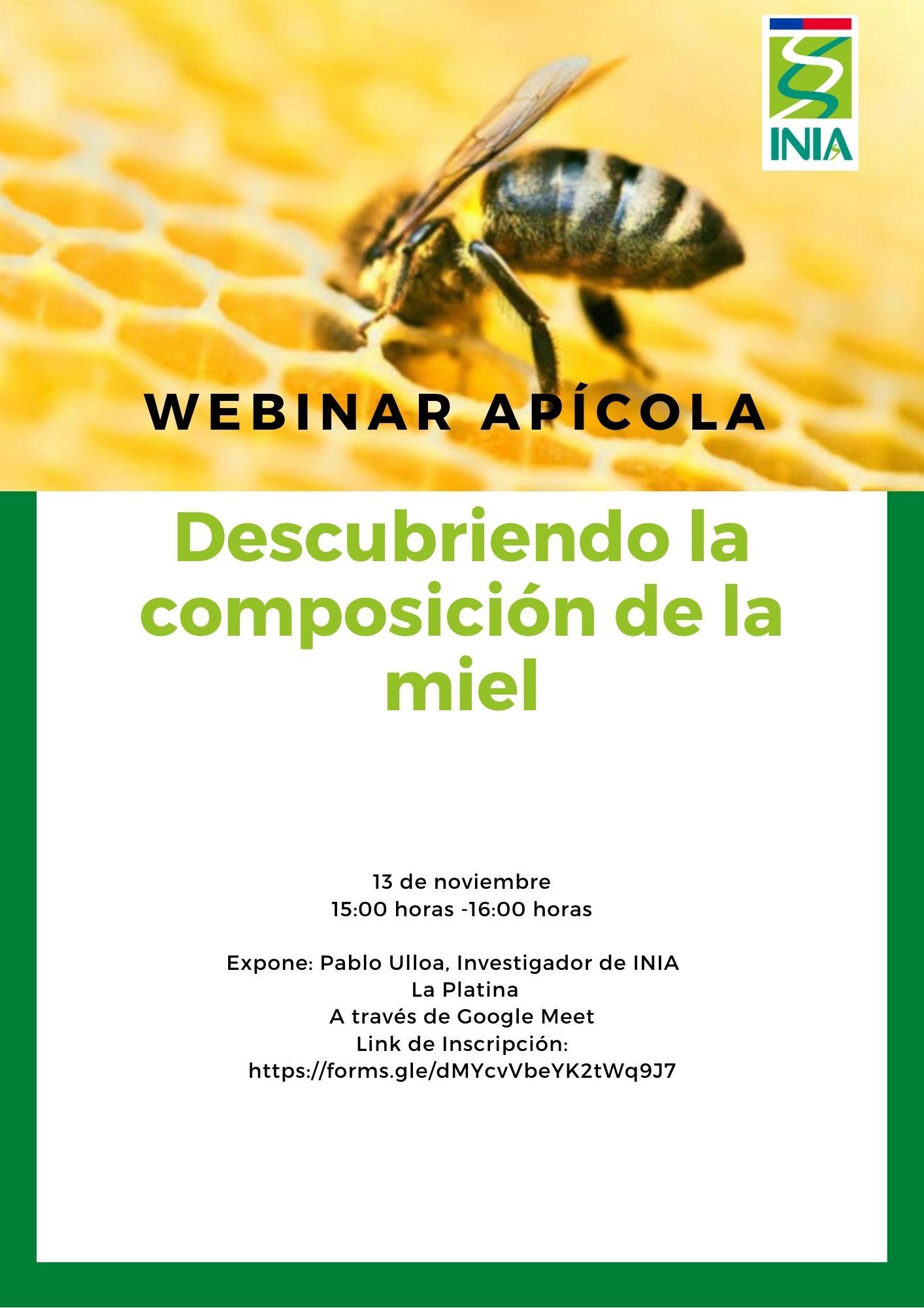 INIA Intihuasi continúa coordinando talleres para apicultores de Atacama