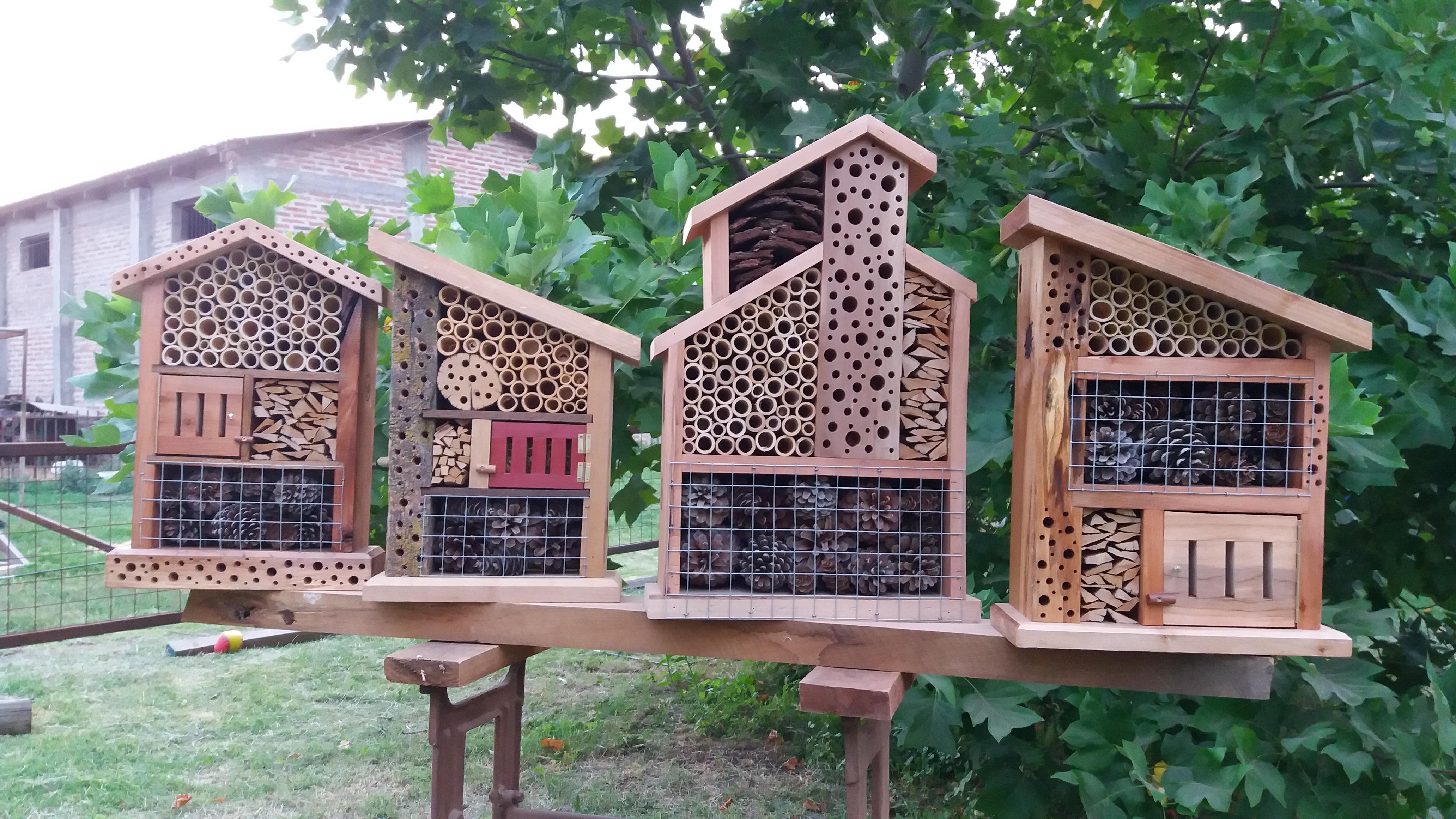 Hoteles anidan a insectos para control natural de plagas