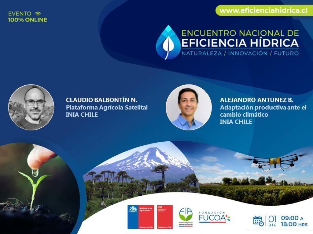 En Encuentro Nacional de Eficiencia Hídrica: Especialistas en riego y mejoramiento genético de INIA  presentaron nuevas tecnologías para enfrentar el cambio climático