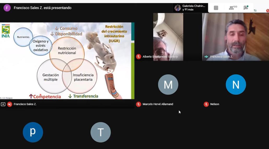 Más de 3 mil personas participaron del ciclo de charlas virtuales de INIA Kampenaike