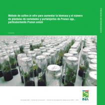 16. Método eficaz de obtención de plántulas de cerezo